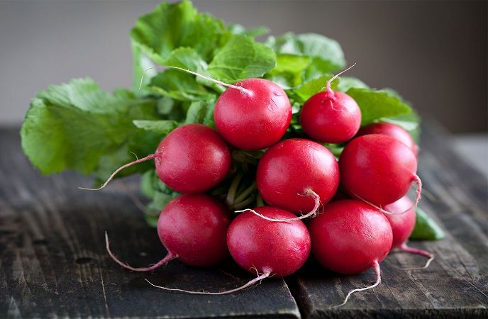 how-to-increase-breast-size-eat-radish