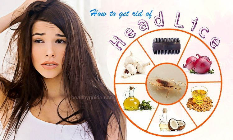 23 Tips How to Get Rid of Head Lice Egg Fast & Permanently in One Day