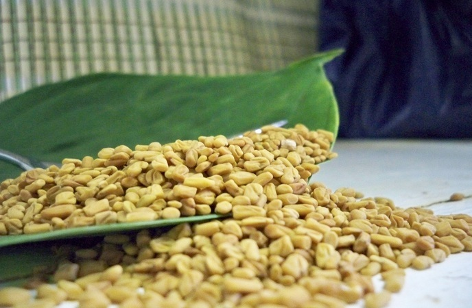how-to-get-thicker-hair-fenugreek-seeds