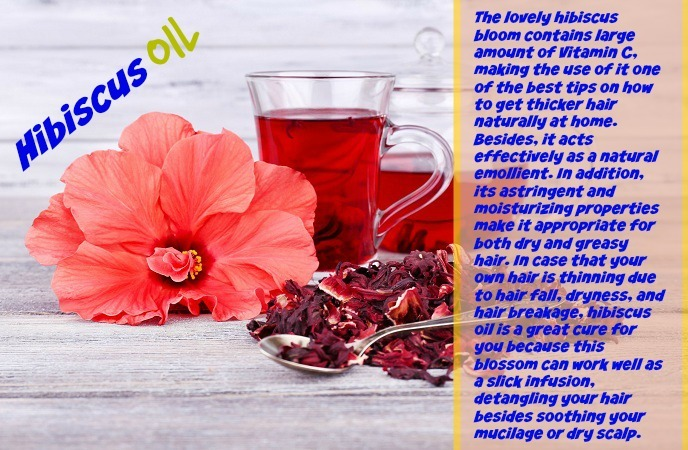 how-to-get-thicker-hair-hibiscus-oil