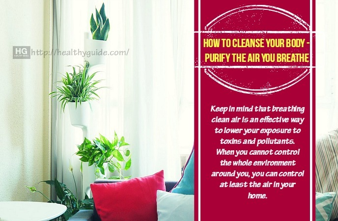 How To Cleanse Your Body