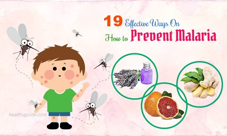 19 Tips How to Prevent Malaria in Children & Adults Fast & Naturally