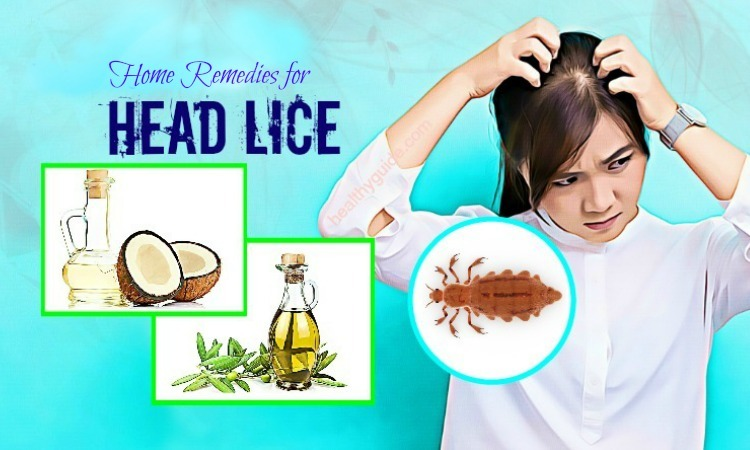 Natural Home Remedies for Head Lice – Top 13 Simple Ways
