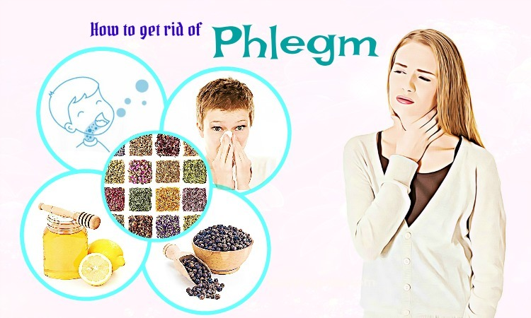 34 Tips How to Get Rid of Phlegm in Nose, Throat, & Lungs after a Cold