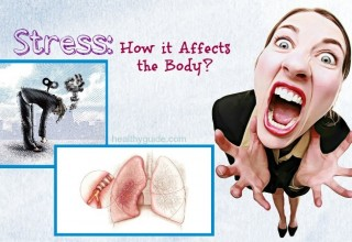 20 Facts – How Stress Affects the Body and Health