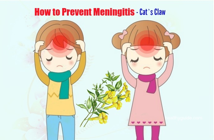 how to prevent meningitis